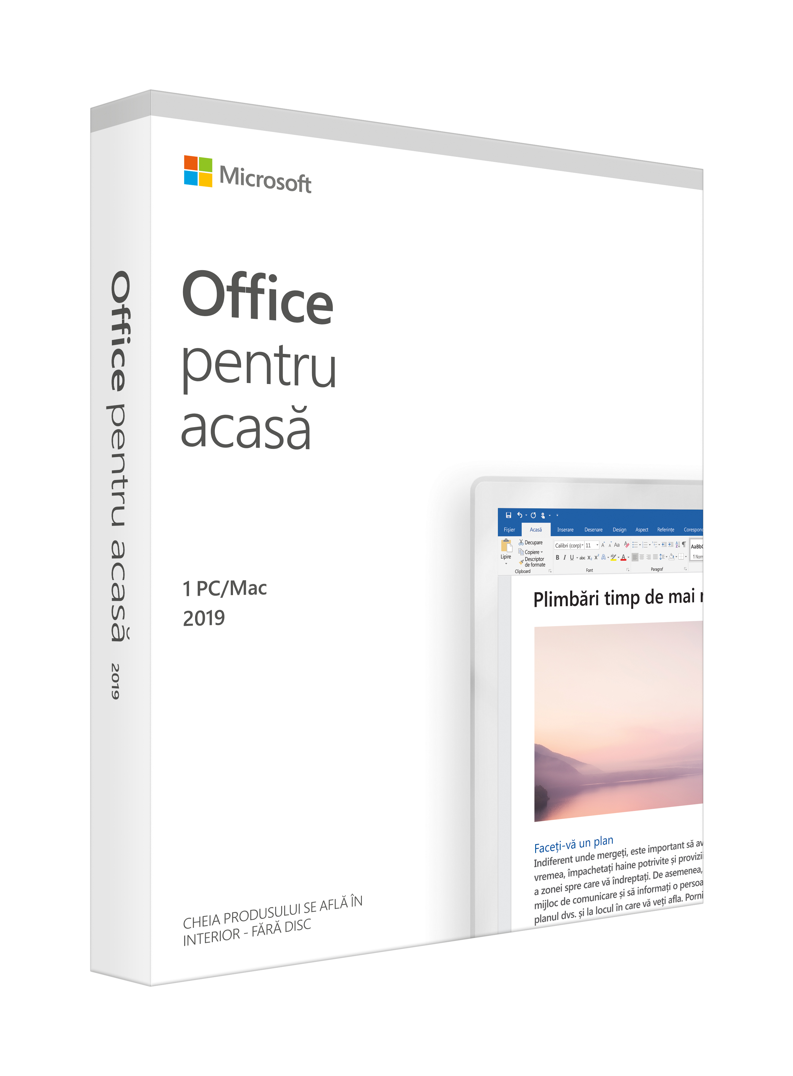 Aplicatie Microsoft Office Home and Student 2019, Engleza, Medialess Retail